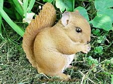 BABY RED SQUIRREL, LIFE SIZE, STUNNING HOME & GARDEN ORNAMENT. ULTRA REALISTIC