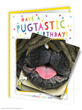 Brainbox Candy Birthday Card & Face Mat funny novelty cheeky kids fun pug dog