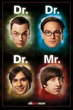 The Big Bang Theory : Dr Mr - Maxi Poster 61cm x 91.5cm (new & sealed)