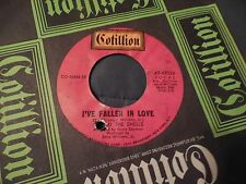 C & The Shells I've Fallen In Love 45 Northern Soul Gem Cotillion 44024 VG++
