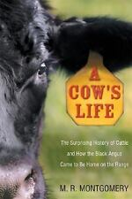 A Cow's Life: The Surprising History of Cattle, and How the Black Angus Came to