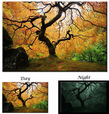 Glow in the Dark Canvas Art - Maple Tree Japanese Garden - Ready to Hang