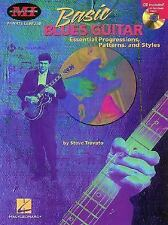 Basic Blues Guitar: Essential Progressions, Patterns and Styles (Private Lessons