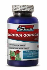 Super Fat Burning - Hoodia Gordonii Cactus 2000mg  Healthy Weight Loss 1B