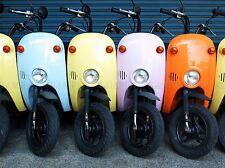 COLORFUL SCOOTERS TRANSPORT PHOTO ART PRINT POSTER PICTURE BMP1424A