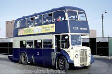 Rotherham Corporation 233 PET233 Daimler CVG6 Bus Photo Ref P684