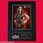 SHAWN MICHAELS Quality Signed Autograph Mounted Photo Repro A4 Print 502