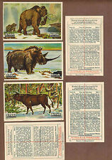 DINOSAURS: Complete Set of Scarce German ERDAL-KWAK Trade Cards (1927)D