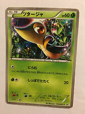 Pokemon Card / Carte Snivy Promo 018/BW-P