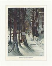 Waldidylle Ludwig Fromme coloriert Winter Wald Rehe Futterstand Nacht ED 0036