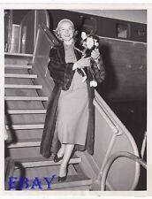 Diana Lynn w/toy monkey VINTAGE Photo candid circa 1950