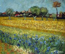 Van Gogh Field with Flowers near Arles Oil Painting repro