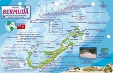 Bermuda Dive Map & Reef Creatures Guide Laminated Fish Card by Franko Maps