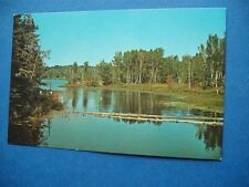 LAKE SCENE WHITE TAIL LODGE NOELVILLE ONTARIO CANADA VINTAGE POSTCARD