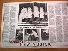 SIOUXSIE and Banshees Who R You 1977 UK newspaper article 16x24 inches