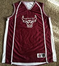 CHICAGO BULLS  # 15  NBA  REVERSIBLE  BASKETBALL JERSEY BY ALLESON MEN'S X LARGE