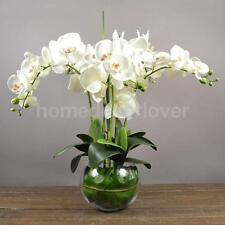 Artificial 12 Heads Orchid Phalaenopsis Real Touch Flower Flower Decor White