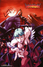 Darkstalkers Vampire Savior Wall Scroll Poster Officially Licensed CWS-23092 New
