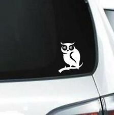 A109 owl hoot tree branch vinyl decal car sticker