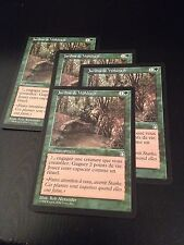 MTG MAGIC STRONGHOLD VOLRATH'S GARDENS (FRENCH JARDINS DE WOHLRAJH) NM X4