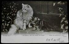 "OLD POSTCARD OF CATS -  ""FOR THERE'S NAE LUCK ABOUT THE HOUSE ..."""