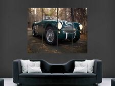 AUSTIN HEALEY 1955 100 CLASSIC SPORTS CAR  GIANT POSTER PRINT ART