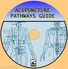 Acupuntura itinerarios puntos & Anatomía Video fácil paso a paso de los recursos pcdvd Nuevo