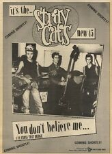 17/10/81PGN15 ADVERT: THE STRAY CATS NEW SINGLE YOU DONT BELIEVE ME 15X11