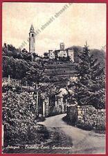 UDINE ARTEGNA 03 CASTELLO Cartolina viaggiata 1964