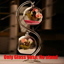 Hanging Glass Flower Plant Vase Bottle Terrarium Container Garden Ball Decor HY