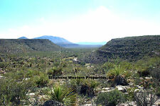 20 ACRE GORGEOUS WEST TEXAS RANCH PROPERTY--EXCELLENT HUNTING HERE $150/MO-TERMS