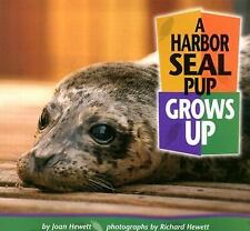 Baby Animals: A Harbor Seal Pup Grows Up by Joan Hewett (2001, Paperback)