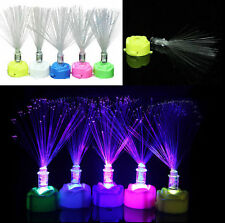 Colorful Changing Garden Decor Lamp Stand Home Night Light LED Fiber Optic