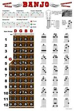 Banjo Chord Chart Poster Fretboard Rolls 5 String Chords Beginner Notes Theory