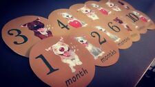 Pitbulls Monthly baby stickers. Onesie month stickers. MBMS000010