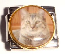 GREY CAT Italian Charm STRIPES - fits 9mm Starter Bracelets I Love my Pets Meow