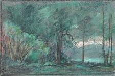 TREES IN LANDSCAPE Pastel Drawing MARCUS ADAMS c1950
