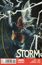 Storm #1 (NM)`14 Pak/ Ibanez  (VARIANT Cover)