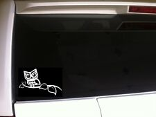 "Owl On A Branch Car Decal Vinyl Sticker 6"" *E87 Bird Laptop Owls Gift Hoot Barn"