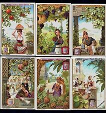 Women & Fruit German Liebig Card Set 1900 Vineyard Grape Orange Banana Tree Fig