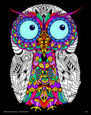 Owl - Large 16x20 Inch Fuzzy Velvet Coloring Poster