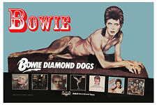 David Bowie * Diamond Dogs * Promotional Poster 1974