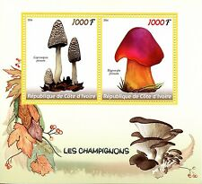 Costa d'Avorio 2016 MNH FUNGHI 2) / M / S hygrocybe FUNGHI STAMPS