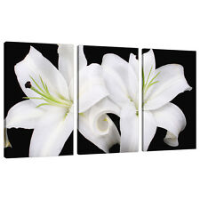 Set of Three Black White Floral Canvas Pictures Bedroom Wall Art 3128