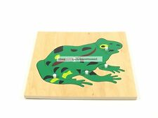 New Montessori Zoology Material - New Plywood Frog Puzzle