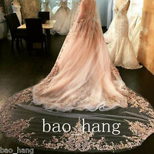 Champagne Appliques Cathedral Bridal Veil Wedding Veils 1 Tier Lace Edge 3M Comb
