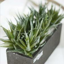 New Artificial Fake Real Touch Flower Succulent Green Aloe Pot