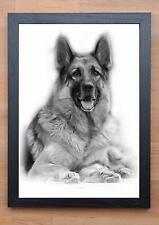 STUNNING FRAMED GERMAN SHEPERD / DOG DRAWING / PRINT