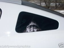 Peaking Monkey Window Decal Decals F150 F250 Ram F350 Y1 R6 Jeep CBR Mustang SS