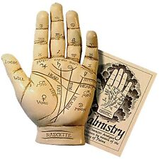 PALMISTRY HAND KIT Includes Cold-Cast Resin Hand & Guide Booklet Palm Reading